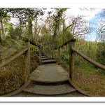 Ness Wood Country Park Gorge Crossing