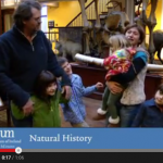 Visitor Vox Pop National Museum of Ireland – Natural History YouTube