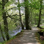 Roe Valley Country Park | Country Parks Co. Londonderry, Northern Ireland