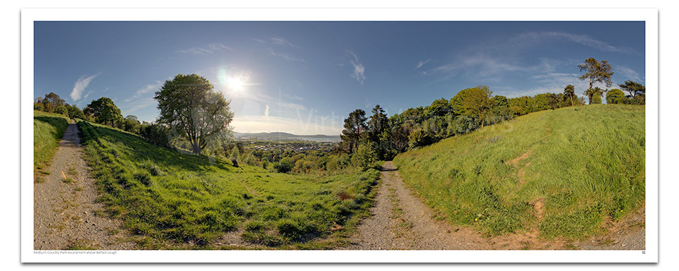Redburn Country Park Escarpment above Belfast Lough