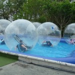 Water Zorbs Carnfunnock Country Park